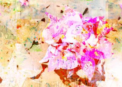 Pink Rose 40x30